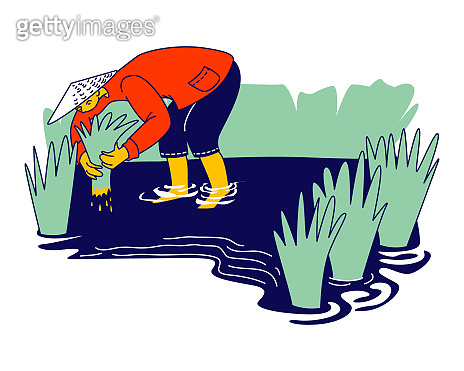 Workers in Thai or China Working on Field in Rainy Season. Chinese or Thailand Farmers Characters Soaked with Water and Mud Planting, Grow and Collecting Rice for Selling. Linear Vector Illustration