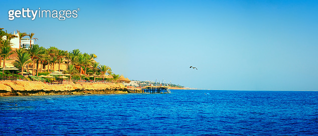 Panorama of the beach at luxury hotel with palm trees, Egypt, Sharm El Sheikh, Red sea