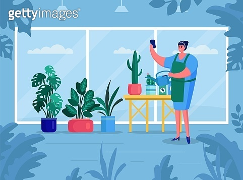 Woman make gouse gardering, vector illustration. Green flowers adorn interior room. Nature plants in flower pot at home apartment