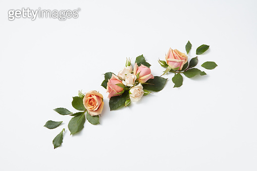 Romantic flowering composition as a festive background.