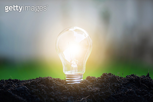 Light bulb glowing in soil, idea or energy and safe environment concept