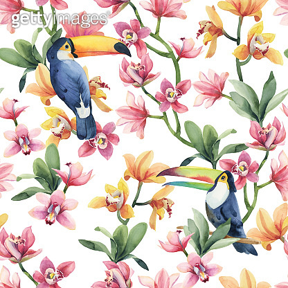 Watercolor seamless pattern, tropical birds, toucan with yellow and red orchid flowers and green leaves on white background