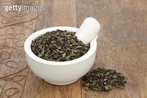 Plantain Herb Herbal Medicine