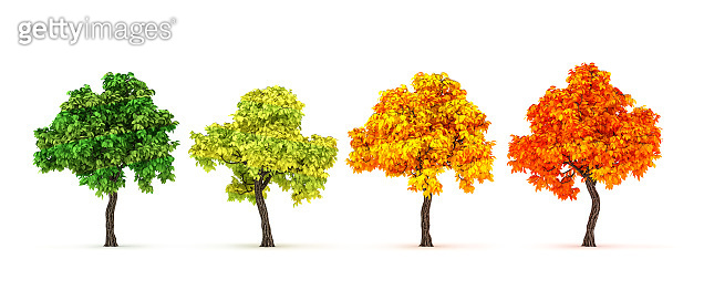 Autumn comes, the tree, the foliage falls. 3d illustration, 3d rendering.
