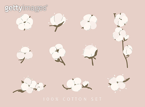 Cotton flower & ball big set. Concept of of natural eco organic textile, fabric.
