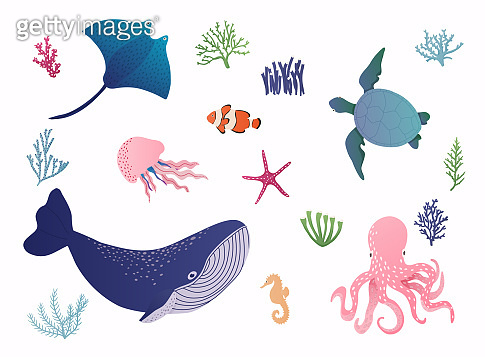 Set with hand drawn sea life elements. Vector illustration.