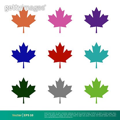 Set Color Maple Leaf Icon Vector Logo Template Illustration Design. Vector EPS 10.