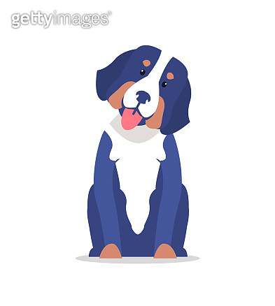 Cute Dog with Long Ears and White Collar Vector