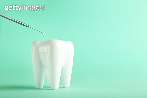 Teeth model with dental instrument on green background