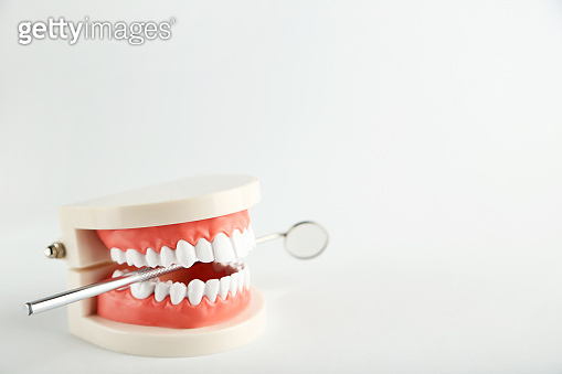 Teeth model with dental mirror on gray background
