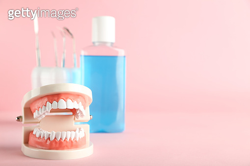 Teeth model with bottle of mouthwash and dental instruments on pink background