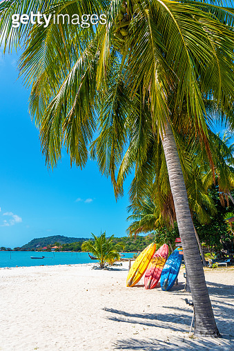 Multi-colored kayaks on a tropical sandy beach. Kayak rental. Tourist entertainment