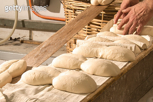 Fresh Chilean rustic marraqueta breads in a bakery factory.