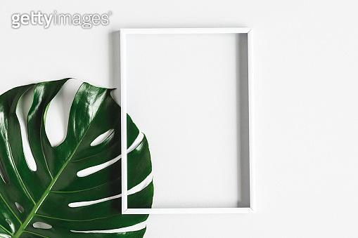Summer composition. Tropical leaf, photo frame on white background. Summer concept. Flat lay, top view, copy space
