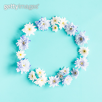 Flowers composition. Wreath made of chrysanthemum flowers on blue background. Flat lay, top view, copy space