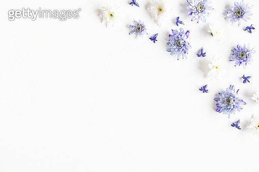 Flowers composition. Frame made of chrysanthemum flowers on white background. Flat lay, top view