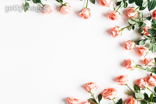 Flowers composition. Rose flowers on white background. Valentines day, mothers day, womens day concept. Flat lay, top view, copy space