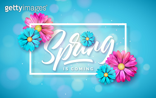 Vector Illustration on a Spring Nature Theme with Beautiful Colorful Flower on Blue Background. Floral Design Template with Typography Letter for Banner, Flyer, Invitation, Poster or Greeting Card.
