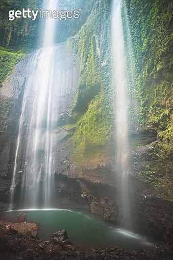Jungle waterfall cascade in tropical rainforest.  Waterfall In Jungle ,Bali ,indonesia