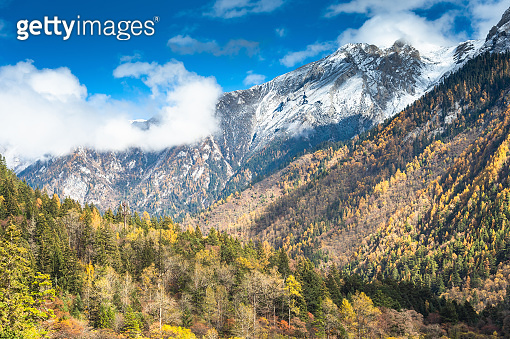Nature view Amazing view of crystal clear water and colourful autumn woods forest and beautiful scenic in Jiuzhaigou nature ( Jiuzhai Valley National Park), China