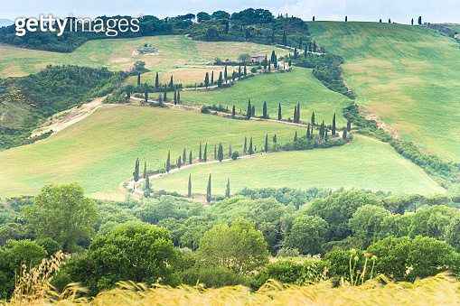 Sunrise Scenic over Famous Tuscany landscape with curved road and cypress Italy