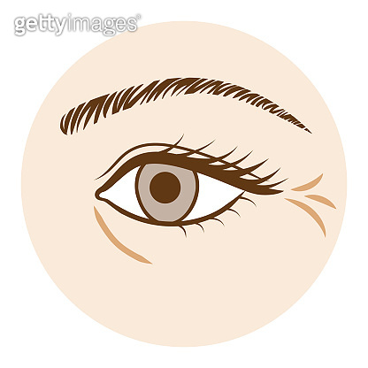 Eye Wrinkle - Body part,Front view