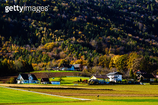 Natural scenery before harvest in Southern Styria, Austria