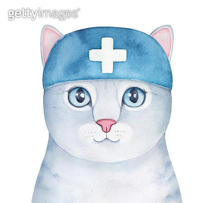 Water color illustration of cute little kitty wearing blue medical hat with cross symbol of first aid. Hand painted watercolour sketchy drawing on white backdrop, cut out clipart element for design.