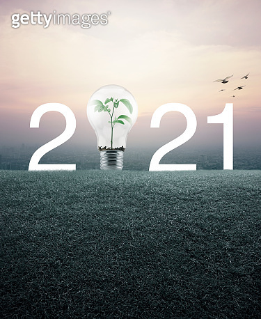 Happy new year 2021 ecological cover concept