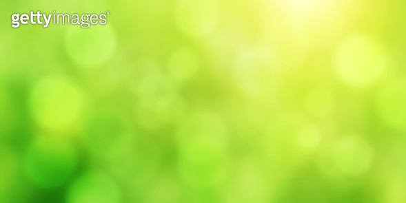 Blurred background of green color