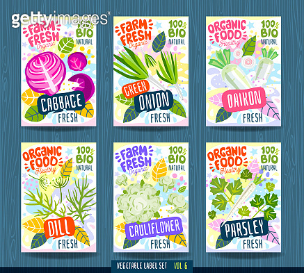 Abstract splash Food label template. Vegetables, fruits, spices, package design. parsley, cauliflower, cabbage, daikon, green onion, dill. Organic fresh.