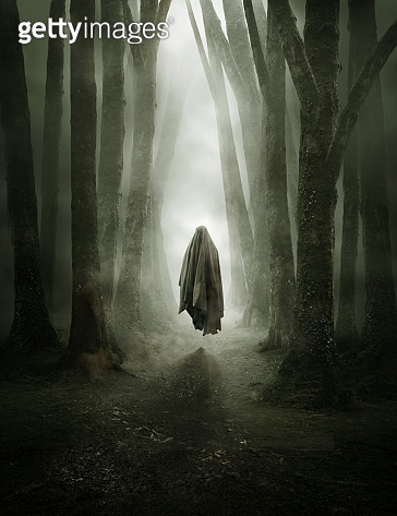 Ghostly Figure In A Misty Forest