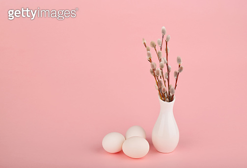 Willow twigs easter concept on a pink background