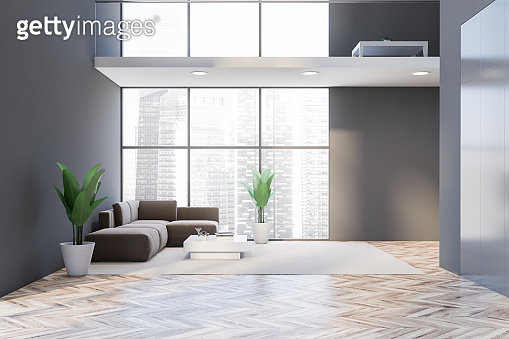 Panoramic gray living room interior