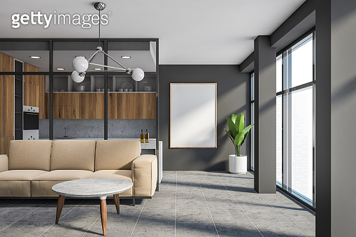 Gray living room and kitchen with poster