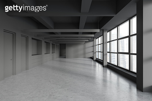 Empty panoramic gray office interior with doors