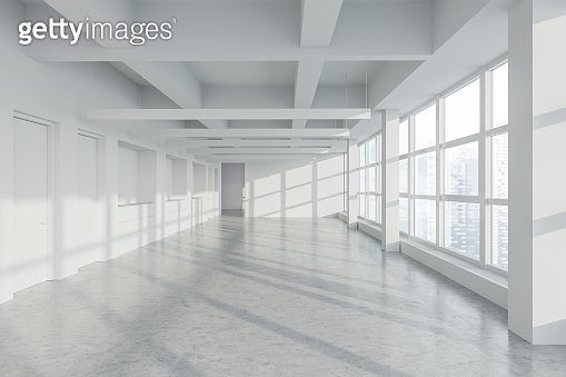 Empty panoramic industrial style office with doors