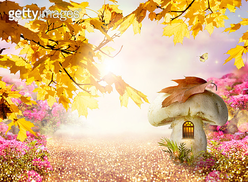 Enchanted fairy tale forest with magical window in fantasy large mushroom gnome house, autumn maple tree, rose flower garden, flying magic butterfly, road path with luminous solar reflection sparkles