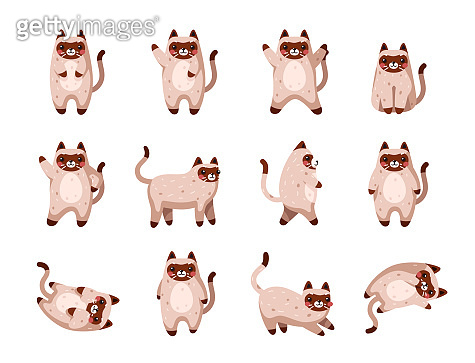 Vector cats. Cute cat set isolated. Funny cartoon animal characters. Different poses and emotions. Flat eps10 illustration.