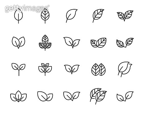 set of  leaf icons, branch, nature, plant, spring