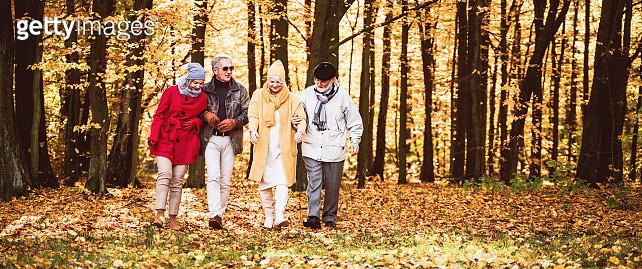 Group of happy senior friends walking in autumn park.