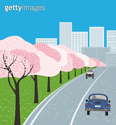 Hand drawn blooming cherry trees vector poster