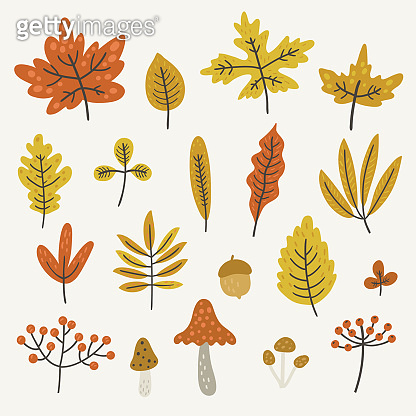 Autumn leaves and mushrooms, vector set