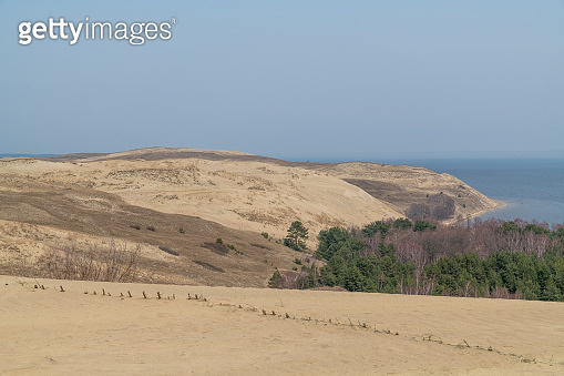 Sand dunes at the Kurische Haff in Lithuania