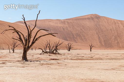 Sossusvlei and Deadvlei in the Namib Desert in Namibia