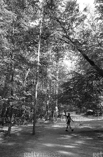 Man is walking on forest footpath