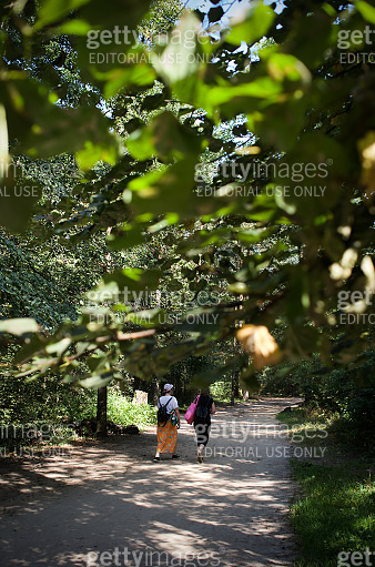 Two women are walking on forest footpath