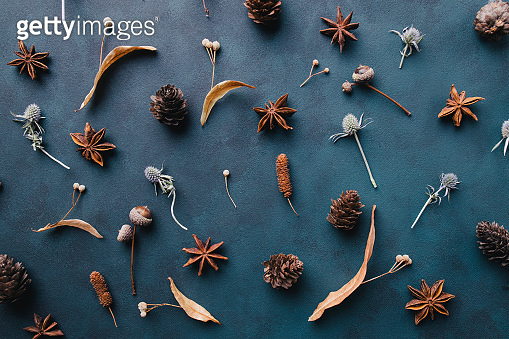 Autumn pattern of dried leaves and acorns