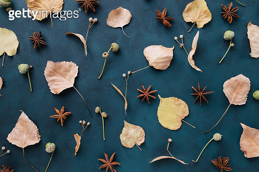 Autumn pattern of dried leaves and flowers