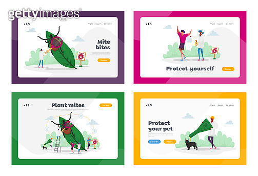 Encephalitis Mite, Tick Bite Protection Landing Page Template Set. Tiny Characters Search Dangerous Mite on Leaf, People Spraying Insect Repellent on Skin and Dog Outdoor. Cartoon Vector Illustration